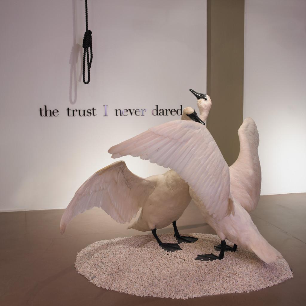 The trust I never dared