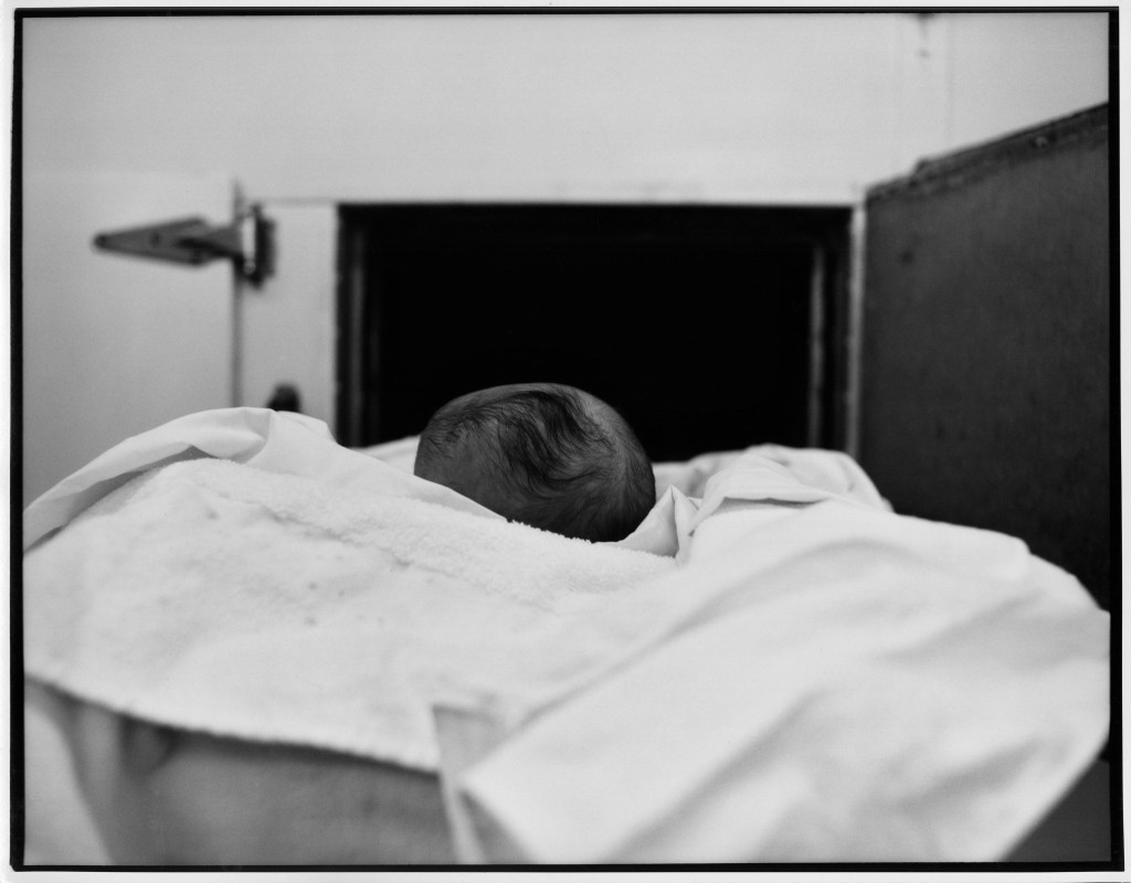 Dead Baby's Head' (Goodbye to Harry Callahan) (série Morgue)